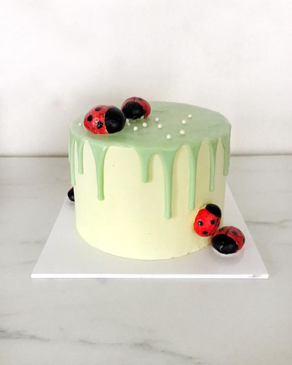 Lady bird cake for a special lady's 2nd birthday. Our own little girl. ♥️ #elevenbakery #eleven #cake #ladybird #neopoli...